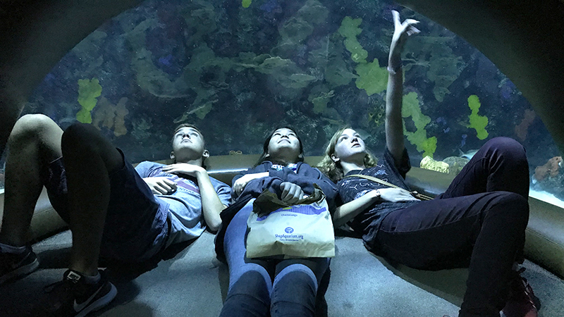 FLEX student from Kazakhstan and her American host siblings discovering the Tennessee Aquarium from below