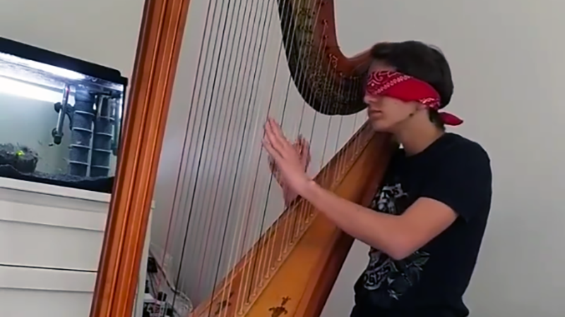 French exchange student playing the harp blindfolded